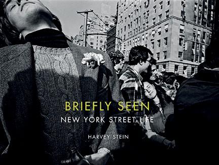 Harvey-Stein-Briefly-Seen
