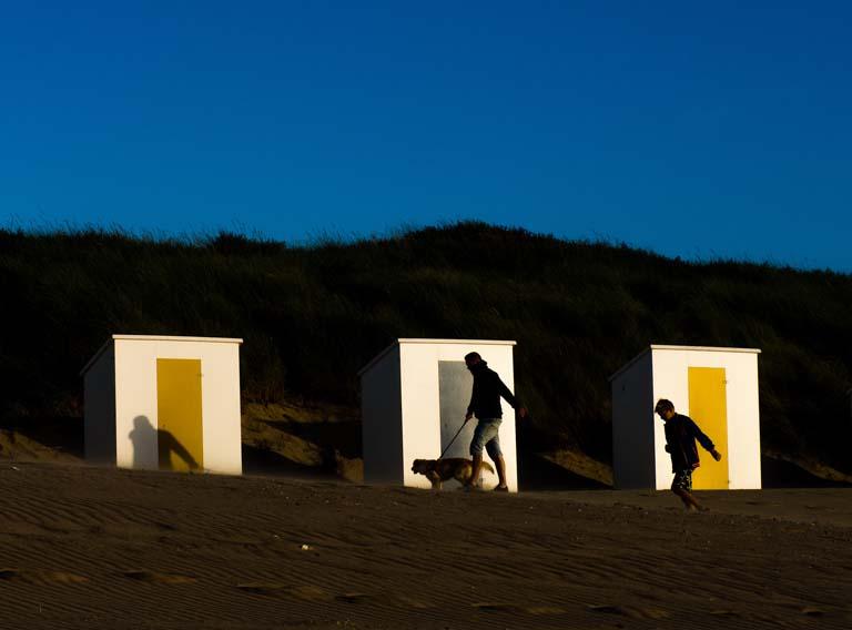 Beach Life - Color