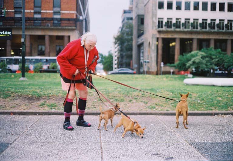 La encantadora de perros