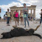 Explore Greece with Harvey Stein and Margarita Mavromichalis